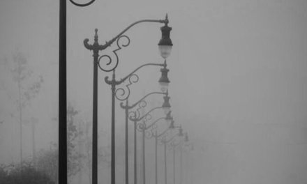 Daily Pic – Foggy Street