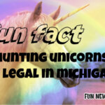 Fun Fact – Unicorn Hunting Fact