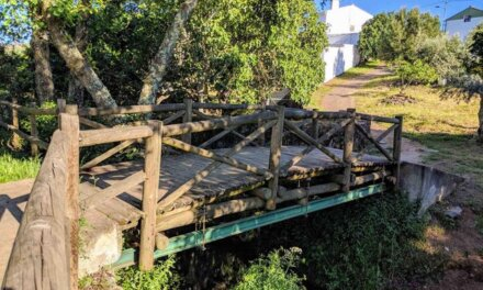 Daily Pic – The World's Shortest Bridge Connecting Two Nations