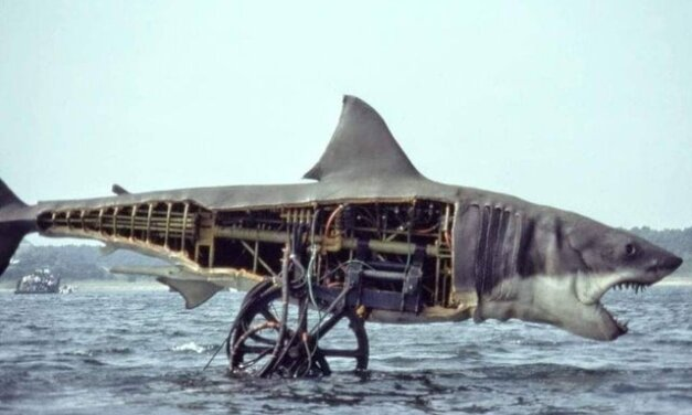 Daily Pic – This Is The Shark From Jaws
