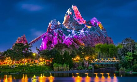 21 Fun & Curious Facts About Disney World