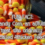 "Fun Fact: Candy Corn, an autumn treat, was originally called ""Chicken Feed"""
